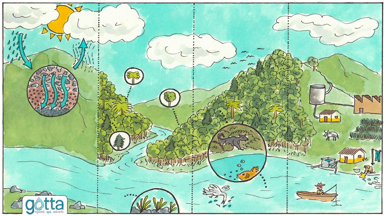 Los estudios ambientales comprenden el análisis de los factores abiótico, biótico y sociocultural.